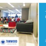 TAMWOOD 2017年冬の割引キャンペーンのお知らせ!