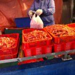 新鮮な魚が買える港町スティーブストン